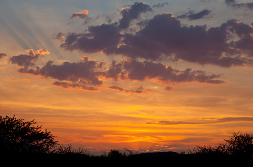 Africa Sunset Pilanesberg Black Rhino Game Lodge Pilanesberg Game Park Black Rhino Private Game Reserve