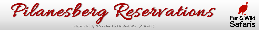 Accommodation Bookings Pilanesberg Game Reserve Malaria free Big Five Game Reserve